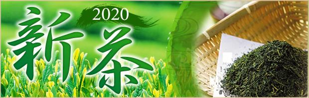 2020新茶